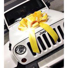 jeep please  – Nafisa Sameja