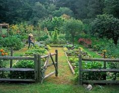 vegetable garden design with wooden fence  – Christophe G