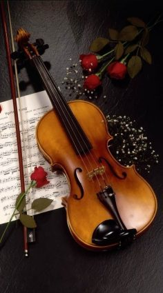 Love and peace for each and everyone in the world. Maybe someday the world will be full of peace. And the violin will always be remembered in our lives. One of the most beautiful memories ♥ …  – elisaellias