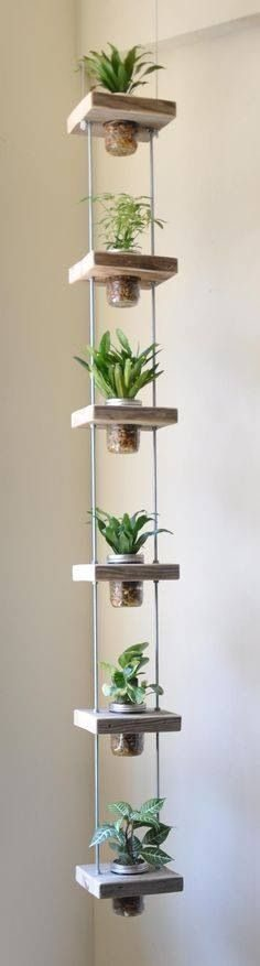 dish, jars, glass, vintage, decoration, lighting, storage, plant, lamp, pot, lantern, pencil  – lelyjoly
