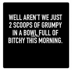 20 Funny Searing Quotes   #funnyquotes #sillyquotes #sarcasticquotes #sarcasm #wittyquotes  – TheFunnyBeaver