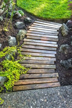 The garden path, as decorative as it is, must allow to easily cross his garden. Its functionality is therefore essential. Taking into account the type of rev …  – mcch1958