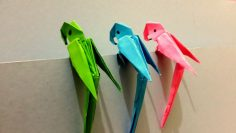 How to make Origami 3D Parrot – Best Origami Tutorial – YouTube  – jamayd2552